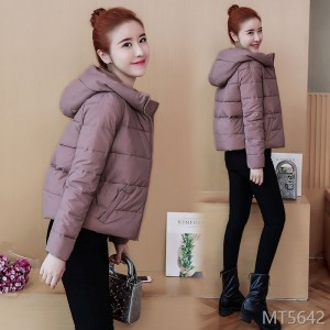 Winter 2008 new style with conventional vertical collar cotton jacket