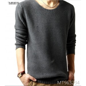 Men's sweater with the same autumn park collar